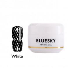 Bluesky matrix gel гель-паутинка, черный 8 гр